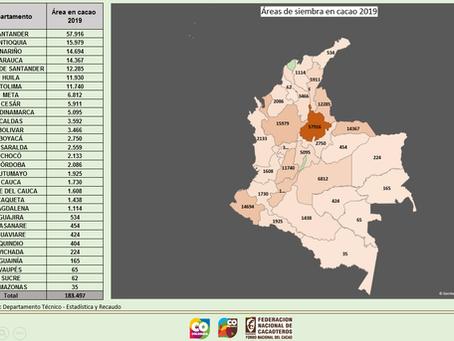 Áreas de siembra en cacao 2019