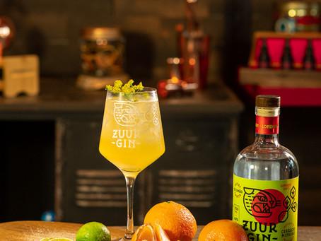 4 drinks refrescantes com Gin