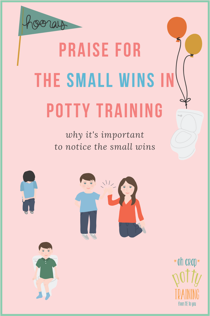 Why it's important to celebrate small wins in potty training