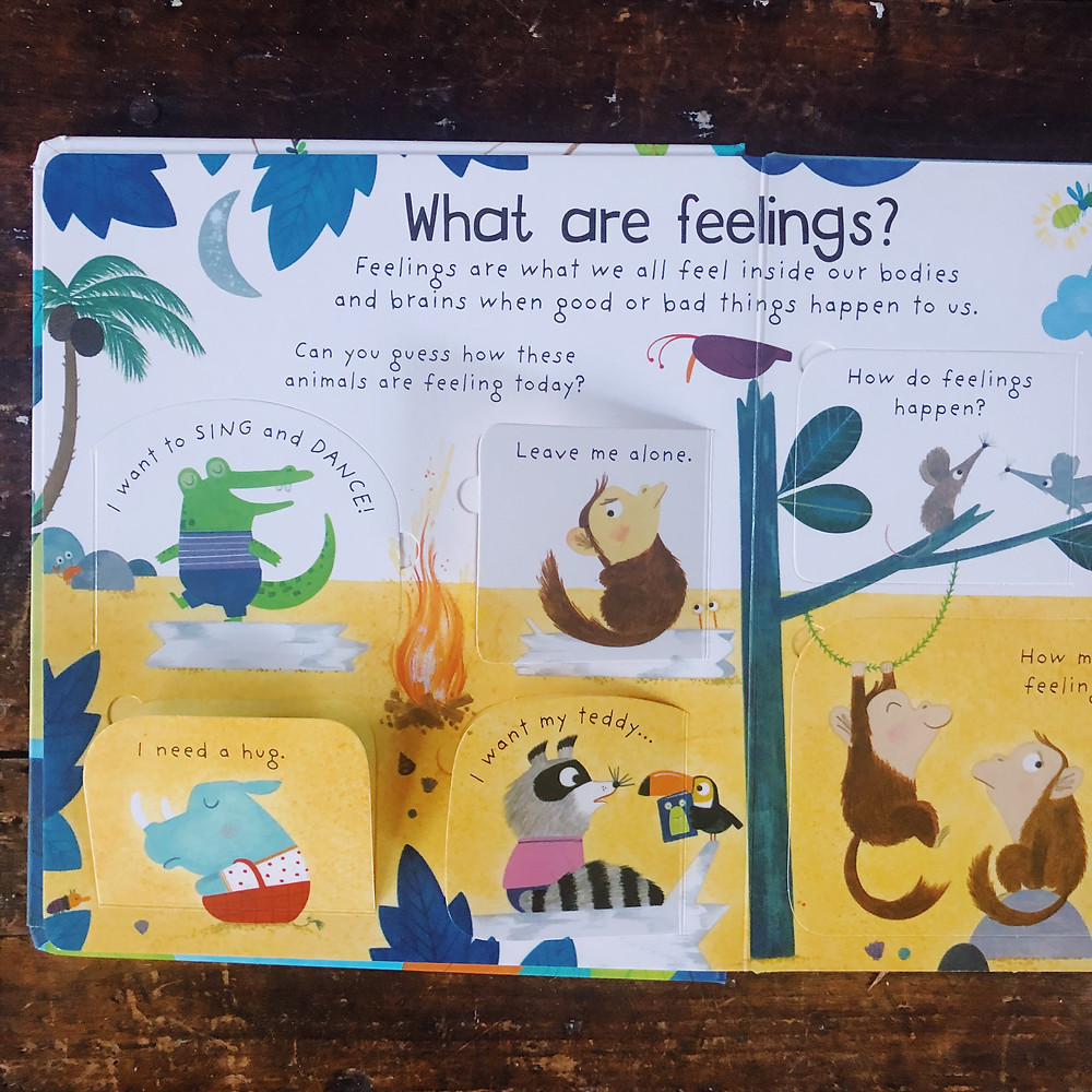 what are feelings usborne books toddlers