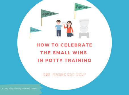 How to Celebrate the Small Wins in Potty Training