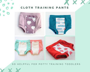 2342b0c8b Here are the Best Underwear for Newly Potty Trained Toddlers