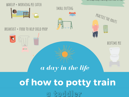 A Day in the Life of How to Potty Train a Toddler