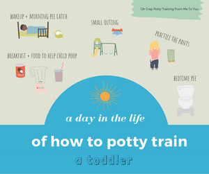 A day in the life of how to potty train your toddler
