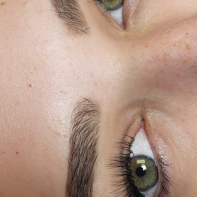 Eyelash Extensions + Brows Package