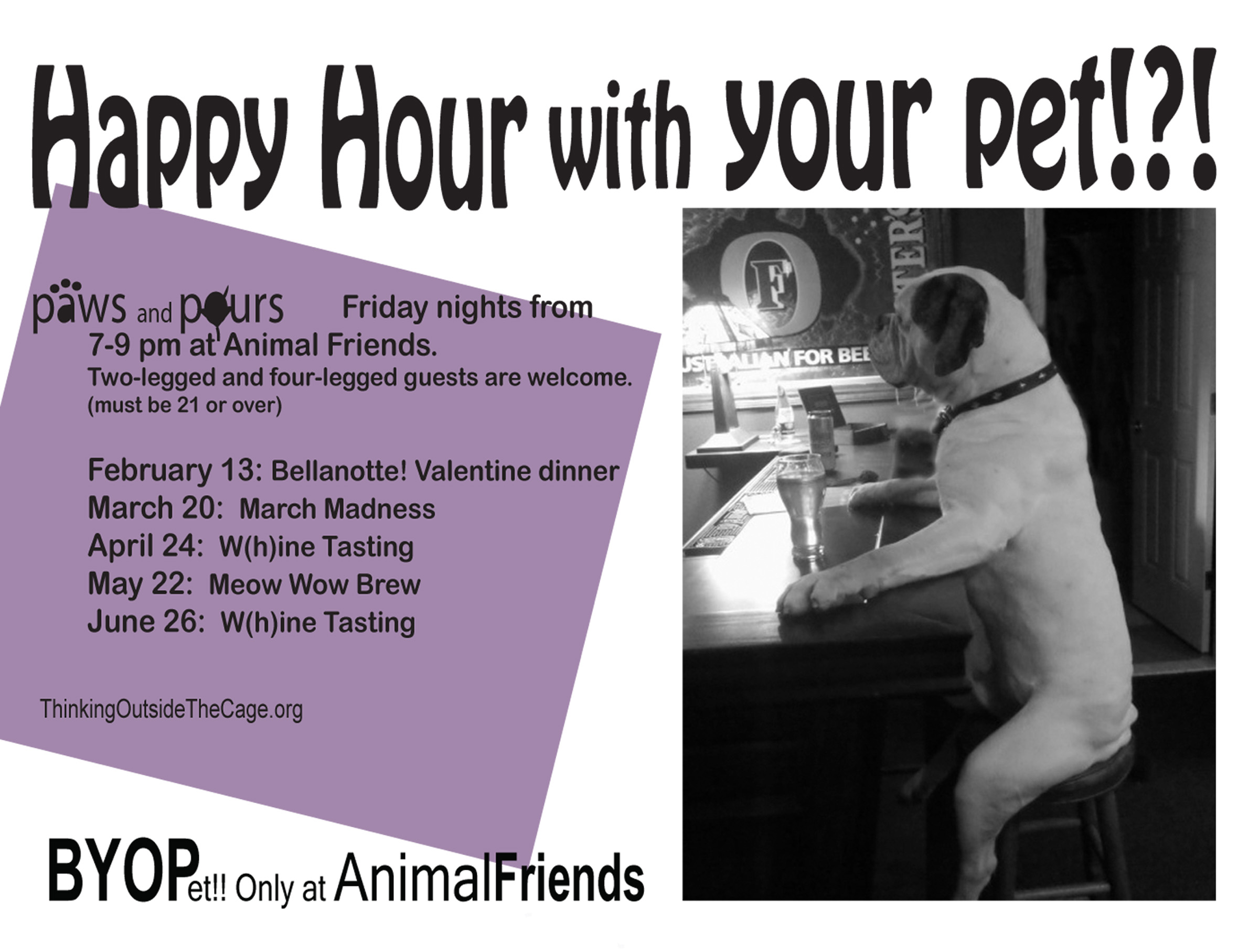 Happy Hour with Your Pet?