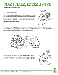 Immune System Workbook.png