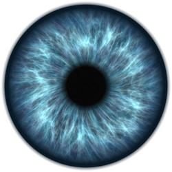#9 The Eye of the Beholder
