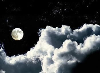Moonlit%20Night%20_edited.jpg