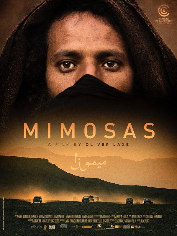 Mimosas - AFTT Main Programme