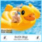 Big Duck.jpg