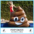 Medium Poop Emoji.jpg