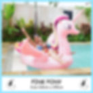 Big Pink Pony.jpg