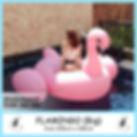 Big Flamingo.jpg