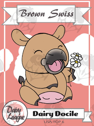 Brown Swiss Trading Card