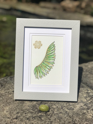 Green Angel Wing