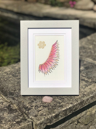 Pink Angel Wing