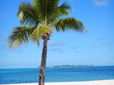 Where To Stay On Your Next Trip To Nassau Bahamas