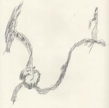 Quartering Myself Drawing Simonini 3.jpe