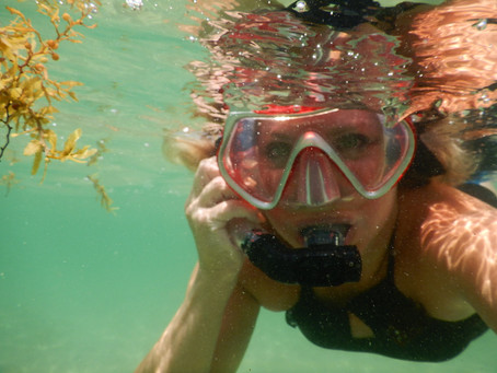Why You Need an Underwater Camera For Your Next Vacation!