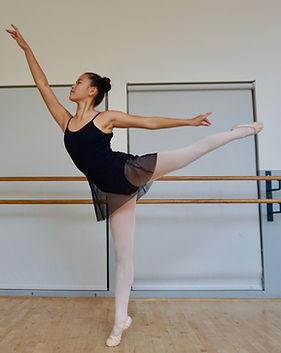 Ballet uniform Dance Co requirement