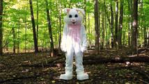 Bunny! | 2019