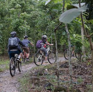 mountain bike 6 - 960px.jpg