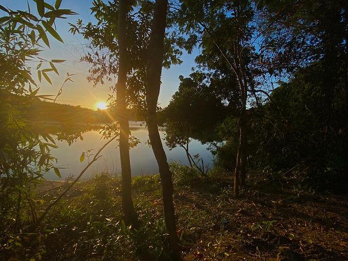 cat tien national park at dawn.jpeg