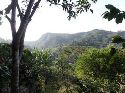Honduran Landscape