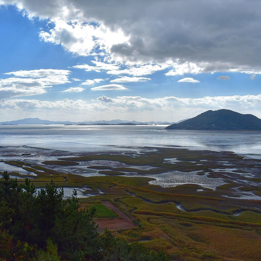 The view of the wetland from Yongsan Observatory atop Mt. Yongsan in the Suncheon Bay Wetland Reserve