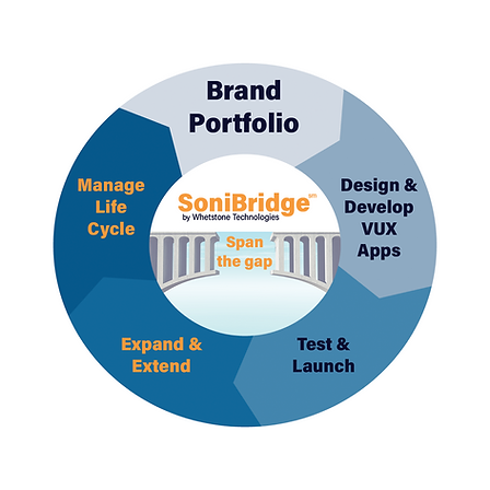 SoniBridge Voice Technology Portfolio Management