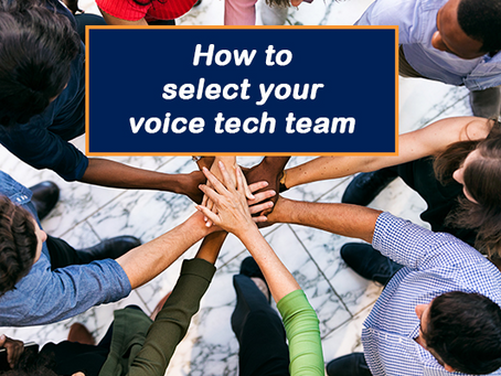 Who's on the Intelligent Voice Assistant Technology Team?