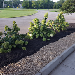 Portico Landscaping