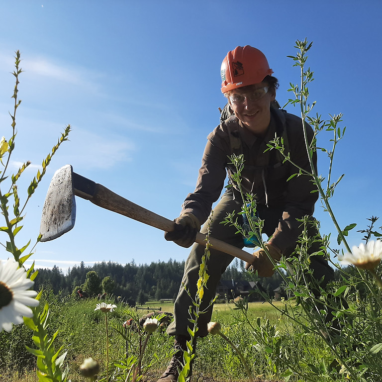 21st Century Conservation Corps: Opportunities for Youth and Young Adults