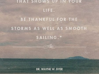 Finding Gratitude in the Storm