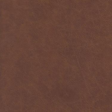 Sierra Light Oak