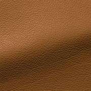 218 Dune