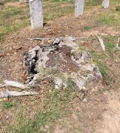 no stone grave