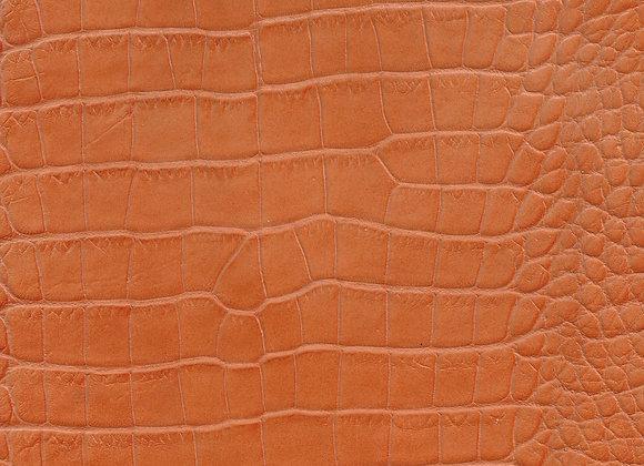 Orange Gator