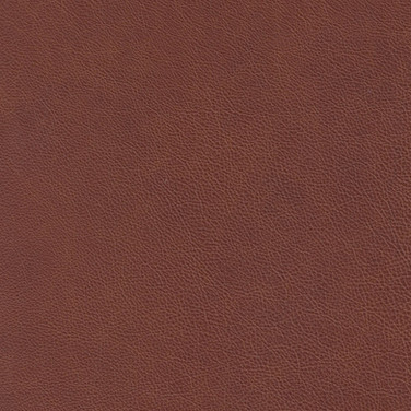 Sierra Red Oak