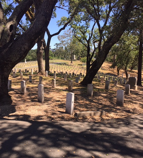 fallen soldiers graves
