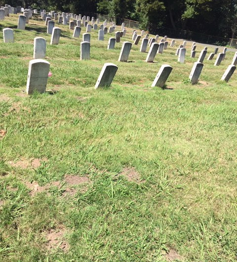 Falling Graves of Honored Soldiers