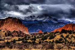 Colorado Springs, Woodland Park Tree