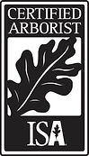 ISA Certified Arborist, Tree Trimming, Tree Removal Woodland Park