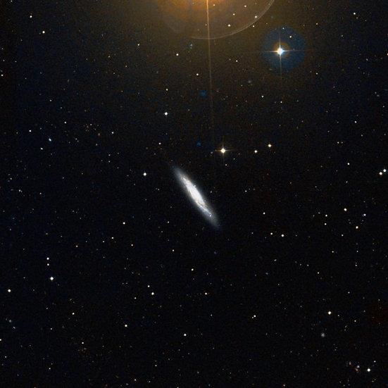 NGC 3877