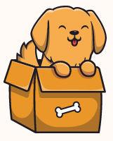 Cachorro na caixa 001.jpg