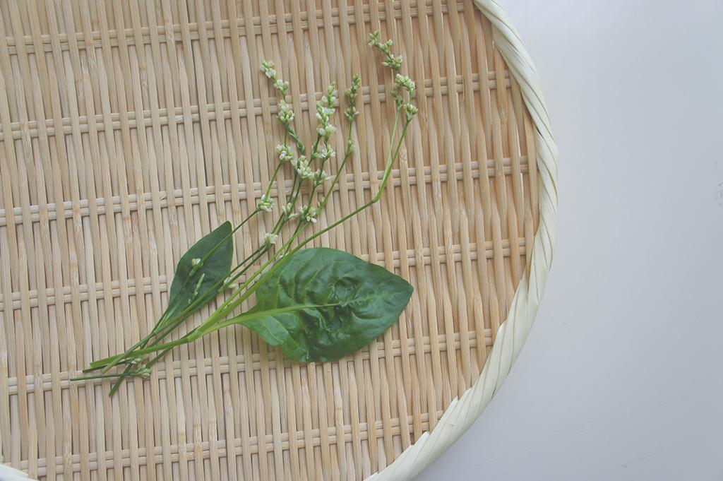 阿波光菜エディブルフラワー「藍の花」