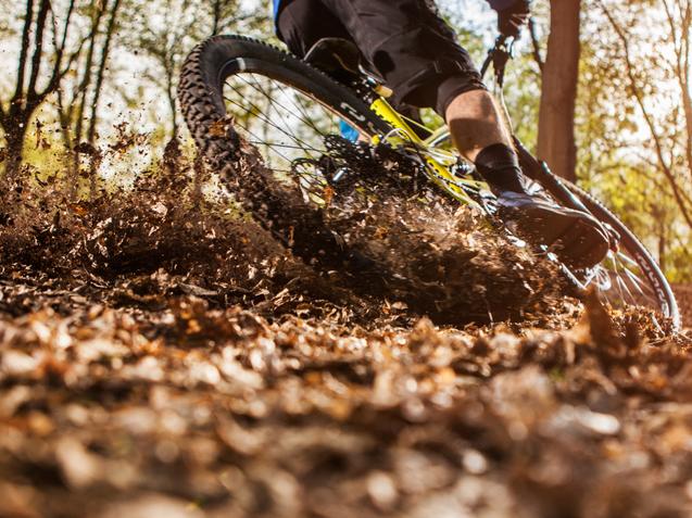 Mountain Biking in Radnor Forest