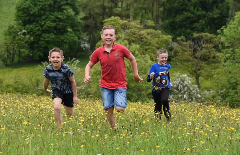 meadow fun.jpg
