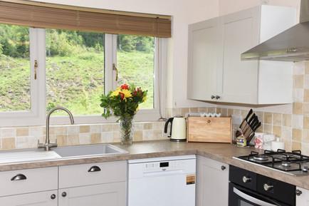 kitchen forest view.jpg